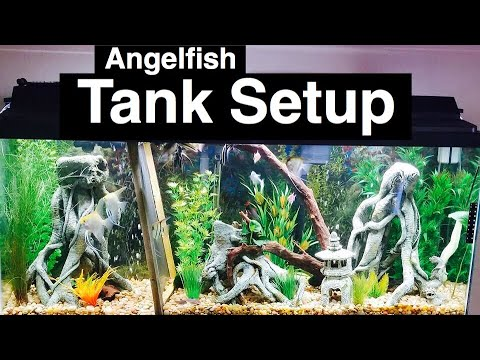 the simple guide to freshwater aquariums pdf