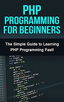 a beginners guide to programming