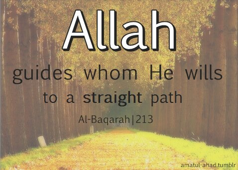 allah guides whom he wills