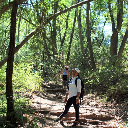 guided hiking tours in california